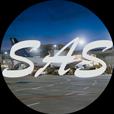 SAS Flughafentransfer Frankfurt
